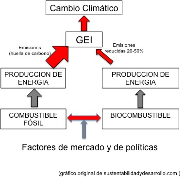 FOSIL VS BIOCOMBUSTIBLE 2