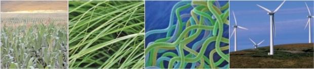 ilustracion biocombustibles